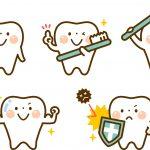 歯ブラシの頸部・把柄部